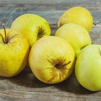 Pomme Golden 2kg