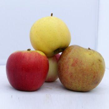 Pommes en mélange 2kg