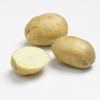 Pomme de terre nouvelle BIO...
