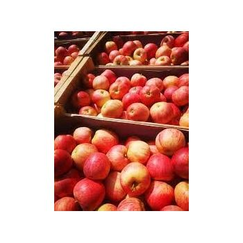 Pommes Royal Gala à la...